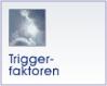 Triggerfaktoren
