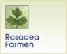 Rosacea Formen